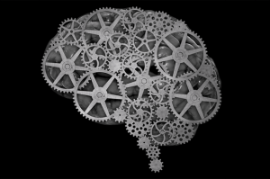 brain-300x199