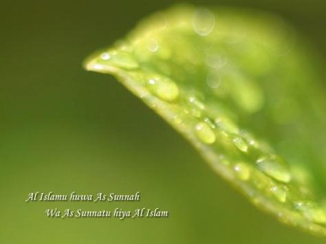 islam-dan-sunnah